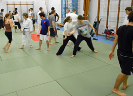 Aikido at Reading University